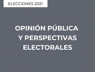 Opinión pública y perspectivas electorales
